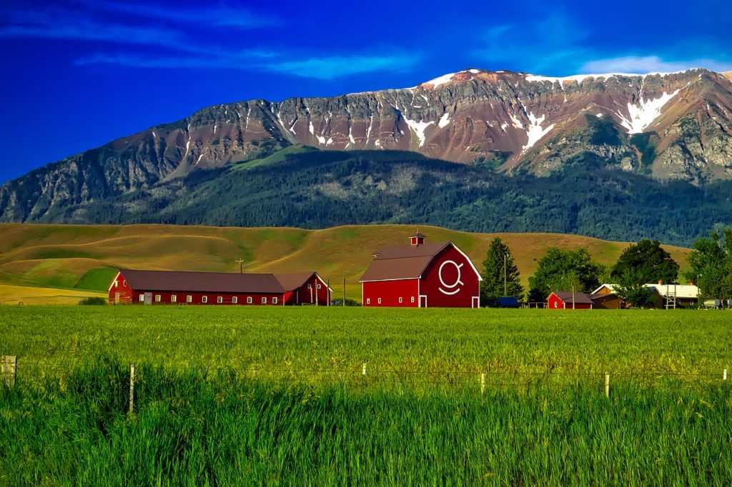 Oregon farm