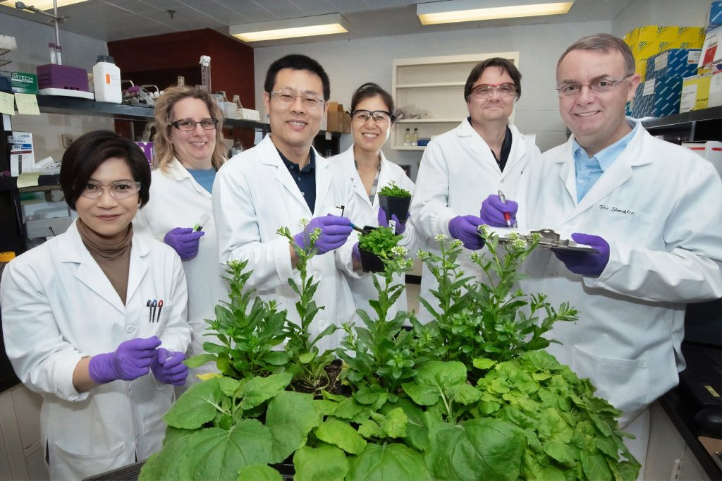 six people in lab coats, standing around some plants, representing cannabis courses in Canada